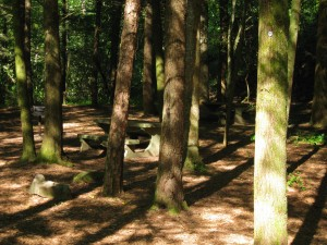 Ga State Parks Offer Special Deal For Tent Campers Lake