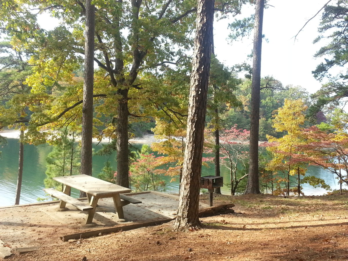 Parks on lake lanier for Lake lanier fishing spots