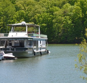 Boats on Lake Lanier must be properly licensed. ~~ Photograph by Robert Sutherland