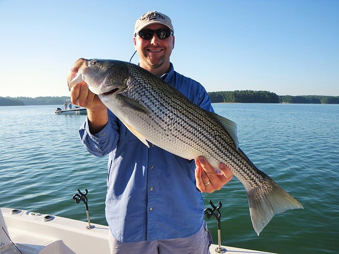 Shane watson 39 s lake lanier fall fishing report for Lake lanier fishing spots